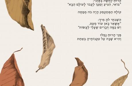 הרצאה בתל אביב - ד